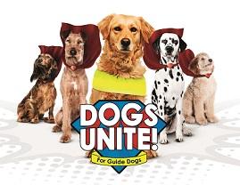 Guide Dogs in 'superhero' ad blitz