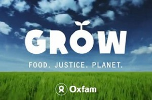 Oxfam chief launches agency review