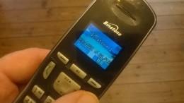 rogue call 1