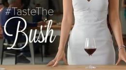 taste the bush