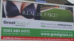 Great Grass Ad