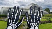 gloves n