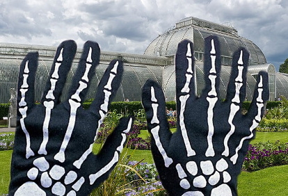 gloves n2