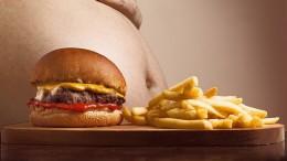 hamburger-2683042_1920